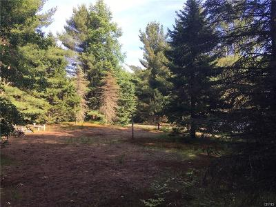 Forestport Residential Lots & Land U-Under Contract: 3040 Bower Road