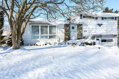 Syracuse Single Family Home A-Active: 209 Snyder Avenue