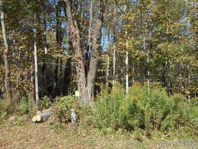 Holland Patent Residential Lots & Land A-Active: Bethel/Phillips Road