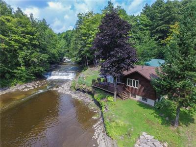 Barneveld Single Family Home A-Active: 10779 State Route 365
