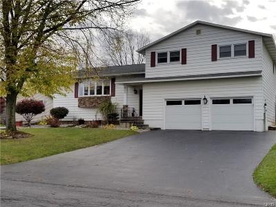 Syracuse Single Family Home A-Active: 423 Ontario