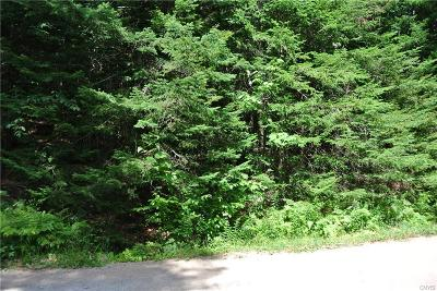 Old Forge NY Residential Lots & Land A-Active: $30,000