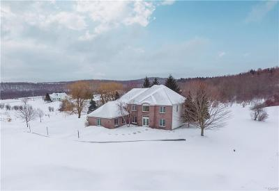 Watertown Single Family Home A-Active: 24384 County Route 67