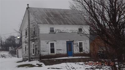 Champion Single Family Home For Sale: 34368 State Route 126