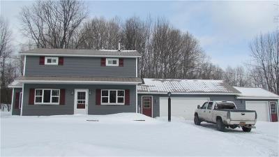 Remsen, Forestport, Boonville, Barneveld Single Family Home A-Active: 1808 Fitch Road