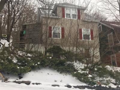 Syracuse Single Family Home A-Active: 1062 Highland Street