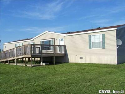 Jefferson County Single Family Home A-Active: 8551 County Route 125 Road