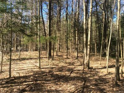 Forestport Residential Lots & Land A-Active: Hawkinsville Road