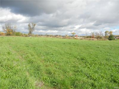 Lowville NY Residential Lots & Land A-Active: $42,000