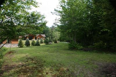Old Forge Residential Lots & Land A-Active: 00 South Shore Road