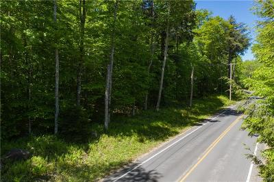 Old Forge NY Residential Lots & Land A-Active: $58,900