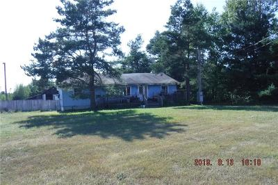 Theresa Single Family Home A-Active: 36811 Nys Route 37
