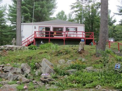 St Lawrence County Single Family Home A-Active: 73 Dillon Point Rd/Prvt