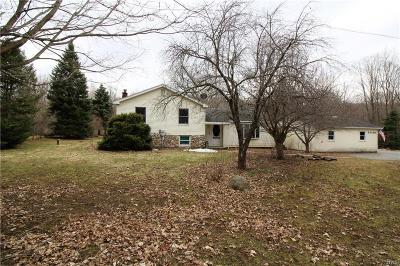 Champion Single Family Home Active Under Contract: 34150 Sayre Road