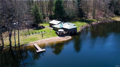 Single Family Home A-Active: 11442 Nys Rt 13