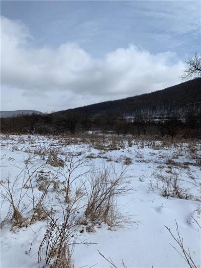 Chautauqua County, Cattaraugus County Residential Lots & Land A-Active: 487 Route 446