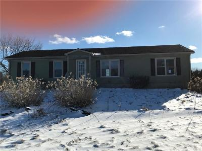 Rome Single Family Home C-Continue Show: 6250 Dix Road