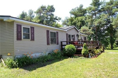 Cape Vincent Single Family Home A-Active: 34106 State Route 12e