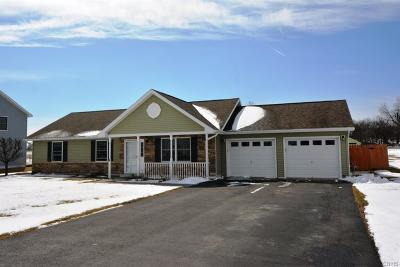 Watertown Single Family Home C-Continue Show: 25785 Liberty Avenue