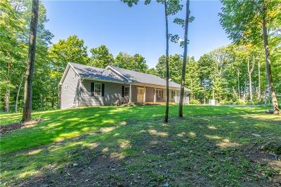 Jefferson County Single Family Home A-Active: 17007 County Route 161