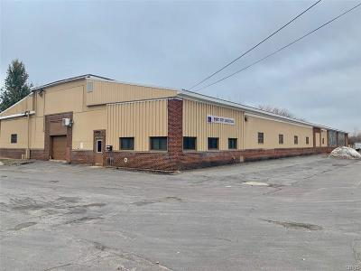 Oswego-City Commercial For Sale: 45 E 12th Street