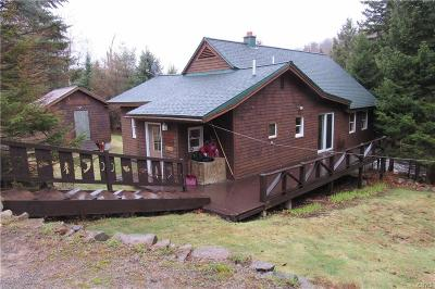 Old Forge Single Family Home A-Active: 132 Palisades Road