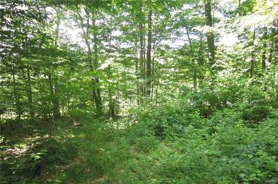 Old Forge Residential Lots & Land A-Active: 0000 State Route 28