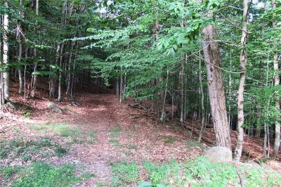 Old Forge Residential Lots & Land A-Active: 0000 Mohawk Drive West