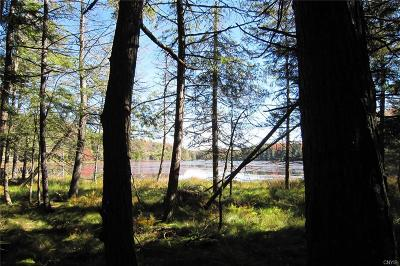 Old Forge Residential Lots & Land A-Active: 00000 Fletcher Road