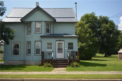 Brownville Single Family Home For Sale: 113 Washington Street