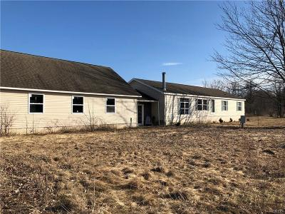 Theresa NY Single Family Home A-Active: $175,000