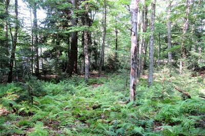 Old Forge Residential Lots & Land A-Active: Sonne Road