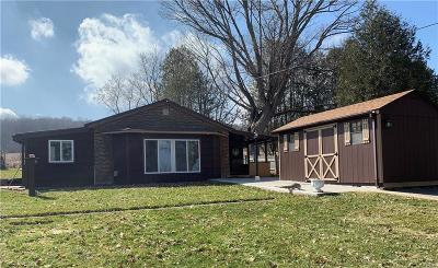 Deansboro Single Family Home C-Continue Show: 2483 State Route 12b