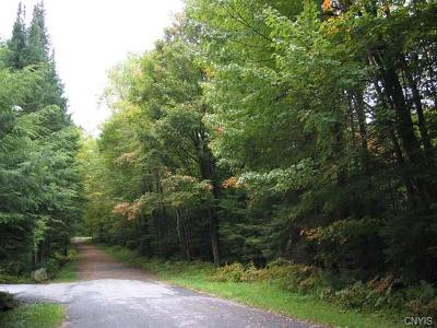 Old Forge Residential Lots & Land A-Active: Browns Tract Road