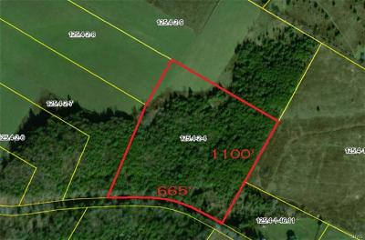 Land Listings | Lawless Real Estate | 315-724-7474 | Remsen