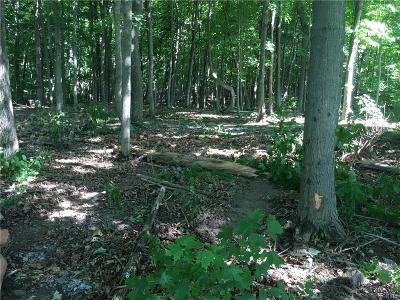 Clayton Residential Lots & Land A-Active: Nys Route 12e