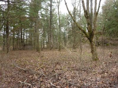 Jefferson County, Lewis County, St Lawrence County Residential Lots & Land A-Active: - Chippewa Creek Rd/Prvt Road