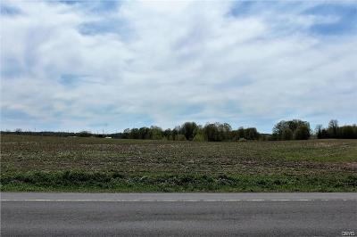 Jefferson County, Lewis County, St Lawrence County Residential Lots & Land A-Active: West State Route 26, #1
