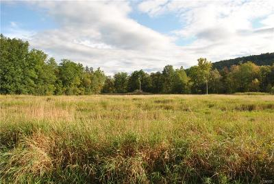 Residential Lots & Land A-Active: Falls Boulevard