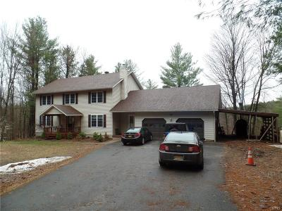 St Lawrence County Single Family Home A-Active: 196 Lenny Road