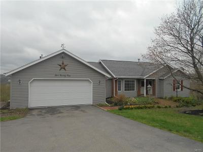 Cayuga County Single Family Home For Sale: 524 Lake Como Road