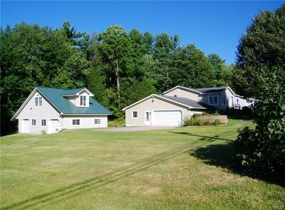 Oneida County Single Family Home For Sale: 10051 Florence Hill Road