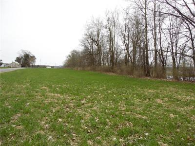 New Bremen NY Farm & Ranch For Sale: $39,900