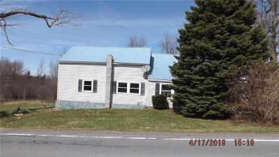 Adams Single Family Home For Sale: 14050 County Route 66