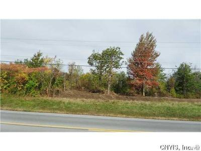 Residential Lots & Land A-Active: Nys Route 12