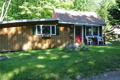 Old Forge NY Single Family Home A-Active: $119,000
