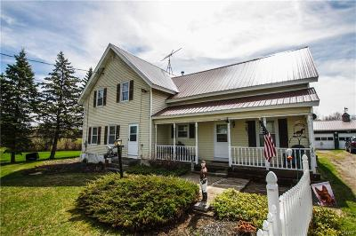 St Lawrence County Single Family Home For Sale: 286 Irish Settlement Road