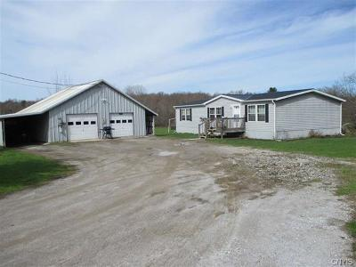 St Lawrence County Single Family Home A-Active: 433 Smith Road