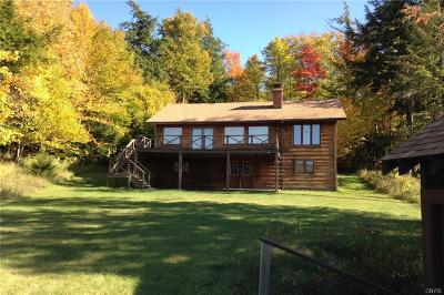 Old Forge Single Family Home A-Active: 2199 South Shore Road