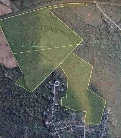 New Hartford Residential Lots & Land For Sale: Homestead Road